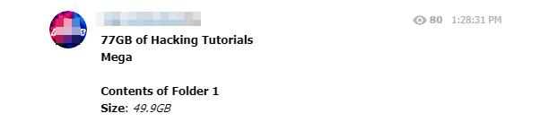 1000 Hacking Tutorials Leaked Pdf Download